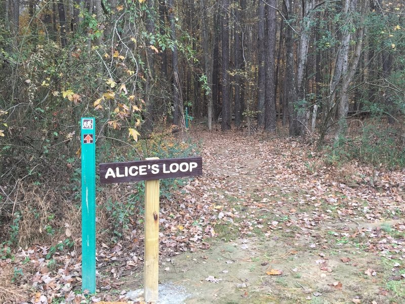 The entrance to Alice's Loop.