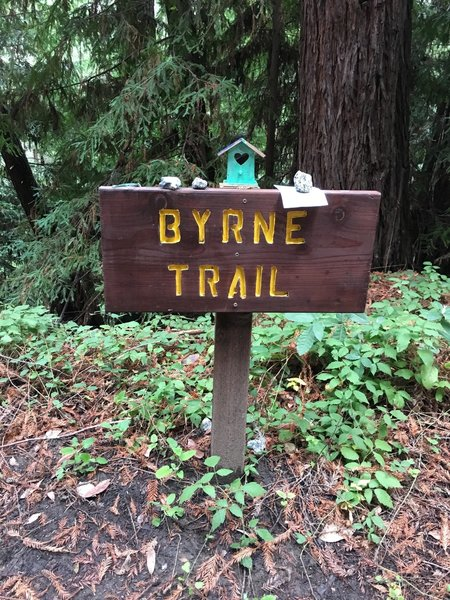Little trinkets on top of the trail signs!