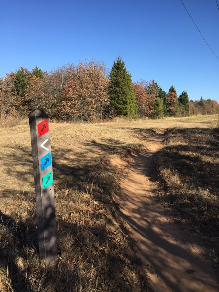 The singletrack green trail opens to the north power line road. Take this a short distance until you turn left onto the blue trail.