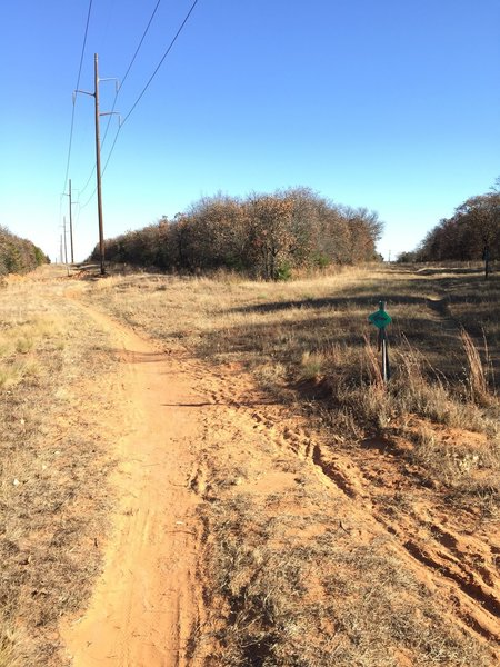 Follow the power line road trail to your left to the end, to rejoin the green singletrack.