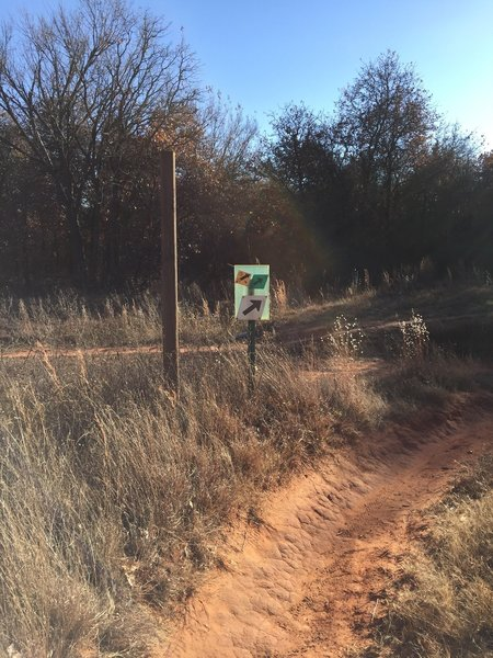 The green trail ends on the south power line road. Turn right and then you'll turn left onto the yellow trail in about 0.2 mile.
