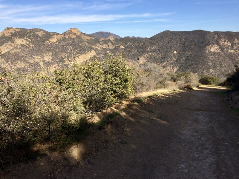 The view from Zuma-Edison Fire Road looking east
