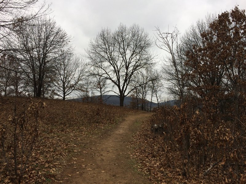 A brown landscape greets visitors to the Ice Age Trail: Merrimac Segment in early December.