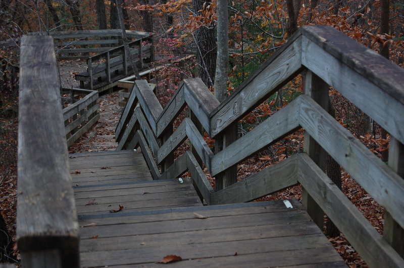 The stairs along the Swift Creek Loop Trail.