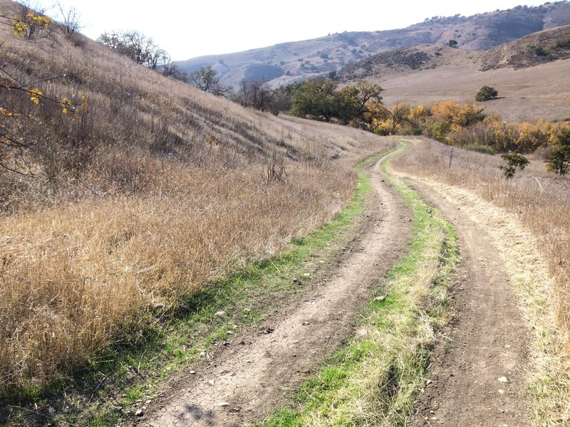 Crummer Ranch Road is nice and smooth as it heads downhill toward East Las Virgenes Trail.