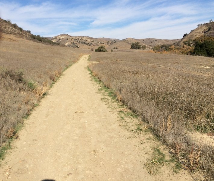 The East Las Virgenes Canyon Trail offers a beautiful view to the east on the long ascent up to the Victory Trailhead.