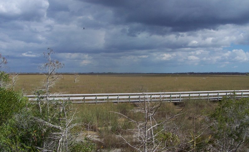 Storm rolling in over the river of grass (Pa-hay-okee boardwalk).