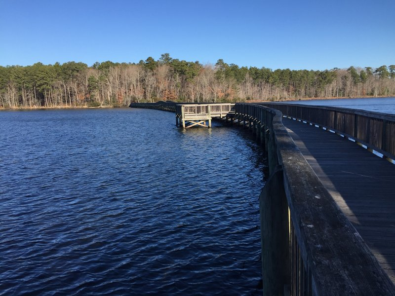 Dam #1 Bridges the Lee Hall Reservoir with access to Twin Forts Trail and  White Oak Trail.