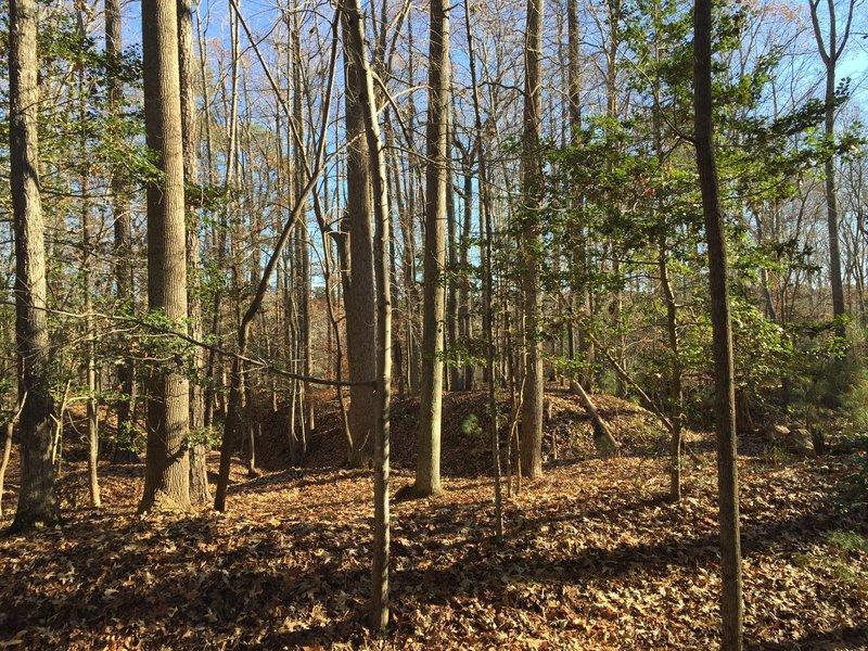 Wynn's Mill Civil War trenches.