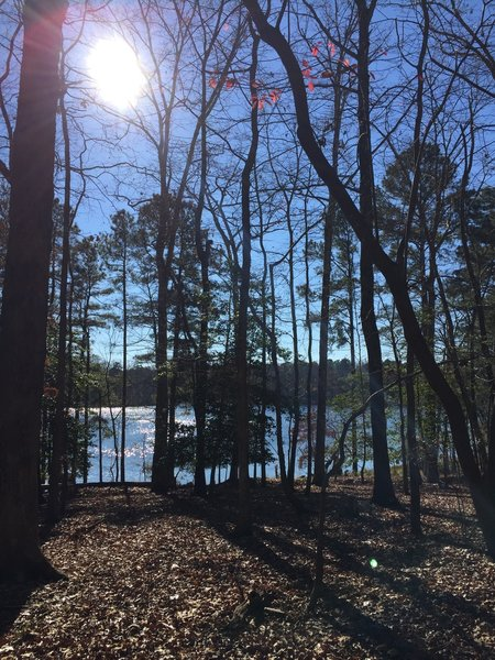 View of Lee Hall Reservoir from the Campground Connector.