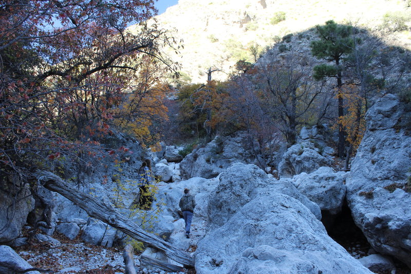 About half of the Devil's Hall Trail is located in a dry creek bed inundated with huge rocks.