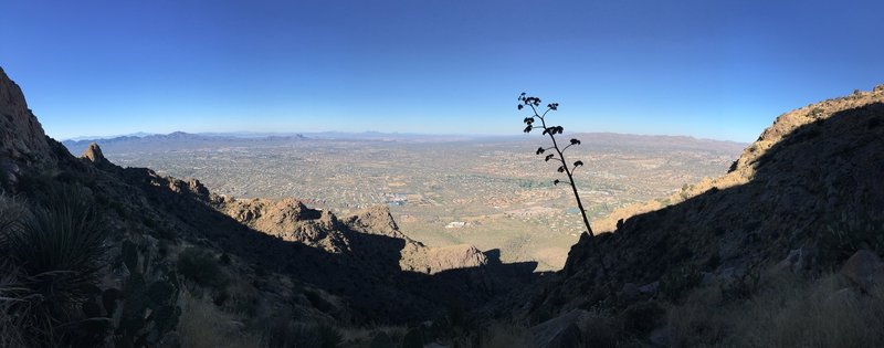 Oro Valley can be seen peeking through the mountains on the Pusch Peak Trail.