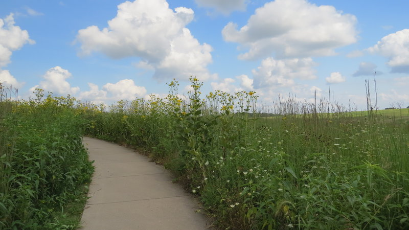 True to its namesake, tall grasses abound along the Tallgrass Trail.