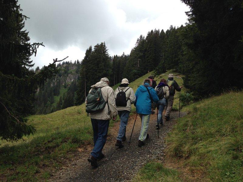 Trekking along the hillside.