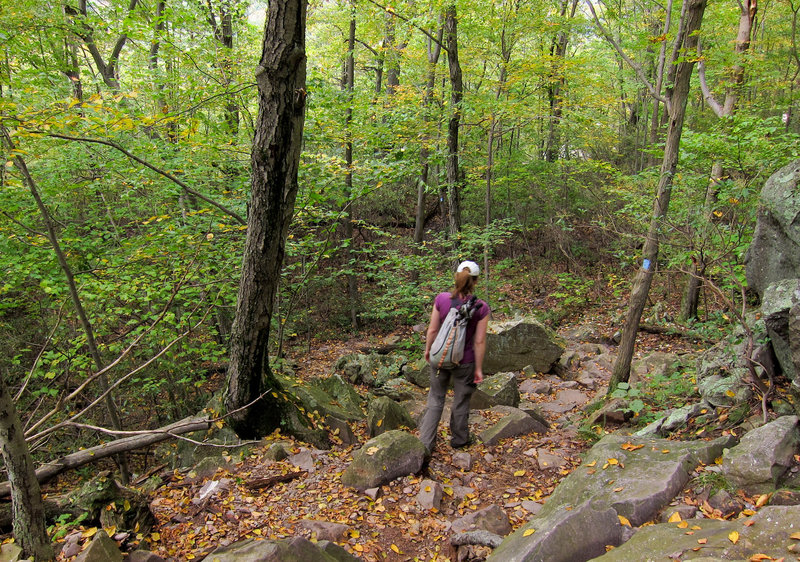 A hiker navigating the rocky terrain along the Terrace Pond North Trail.