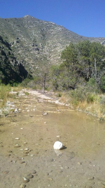 The creek bed fills with water as you move into the canyon (McKittrick Canyon Trail).