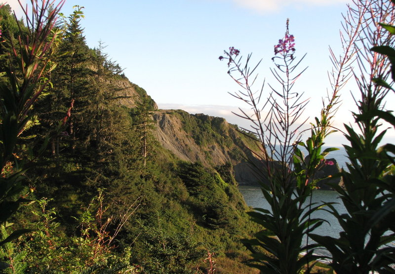There are traces of the Old Redwood Highway still visible on the cliffs above Enderts Beach.