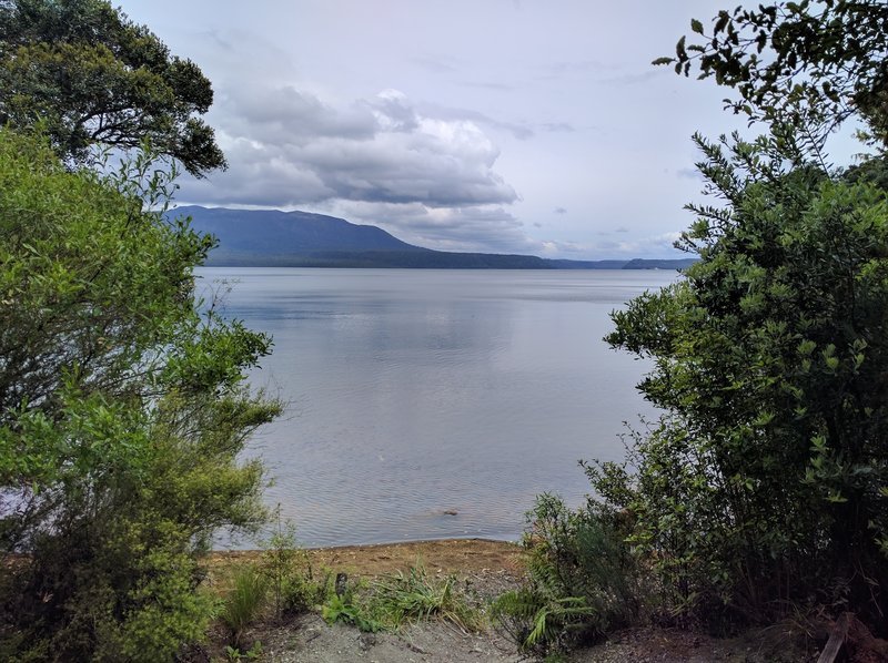 This is the location of the Humphries Bay campsite and an aid station on the Tarawera Ultra race course.