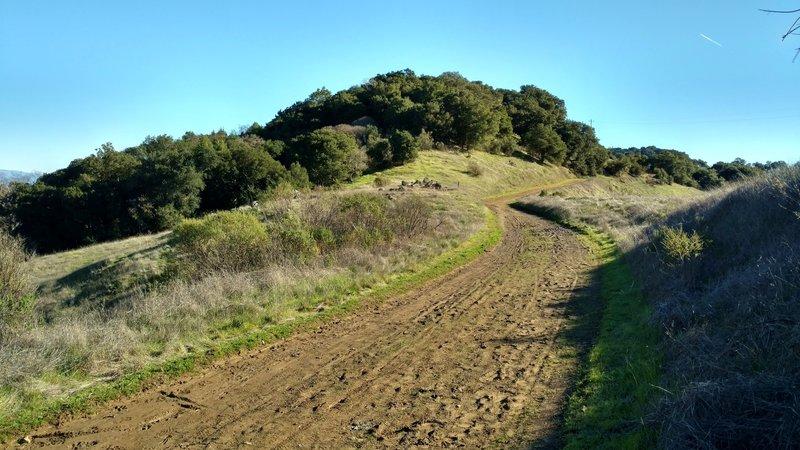 Crisp clear winter day on Mine Hill Trail.
