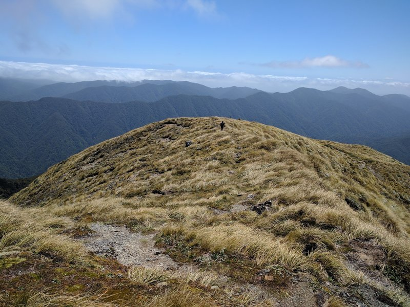 Northern ranges are short on runnable trail sections.