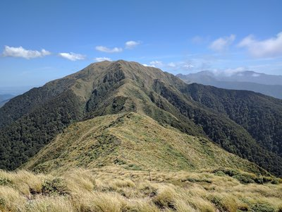 Hiking Trails near Tararua Forest Park