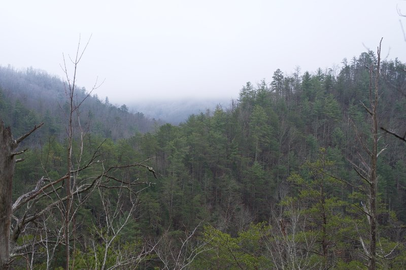 A view of the mountains along the Middle Prong watershed was hidden in low-hanging clouds on this day.