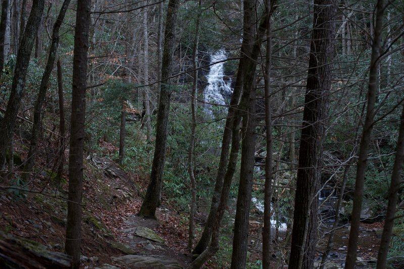 As you come around the corner, you get your first view of Spruce Flats Falls.