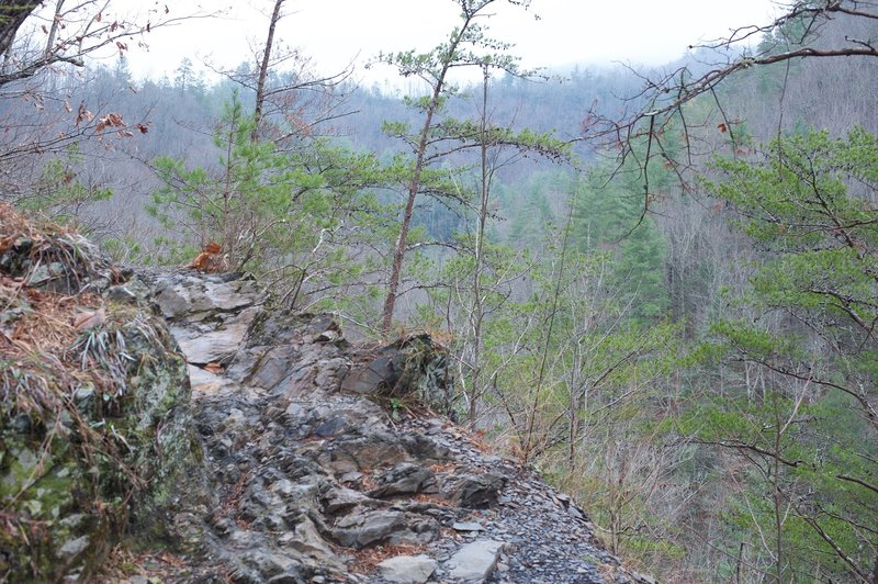The trail can be very rocky, as you see here. You definitely need to watch your footing.