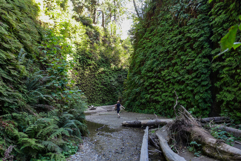 Dancing down the wonderful Fern Canyon Loop Trail makes for a great way to enjoy the moment.