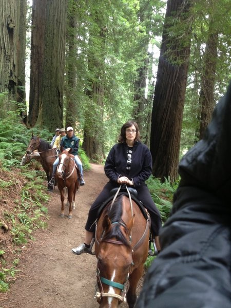 Riding in Redwood National Park on the Orick Horse Trail with the Redwood Creek Buckarettes.