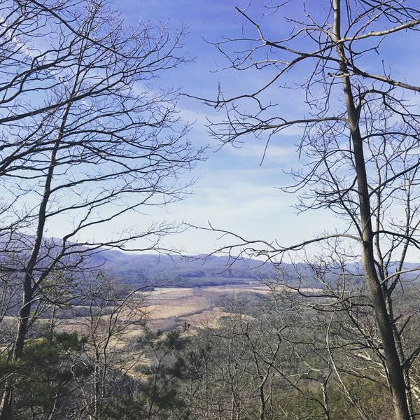 Although obscured, the views of Cades Cove are impressive.