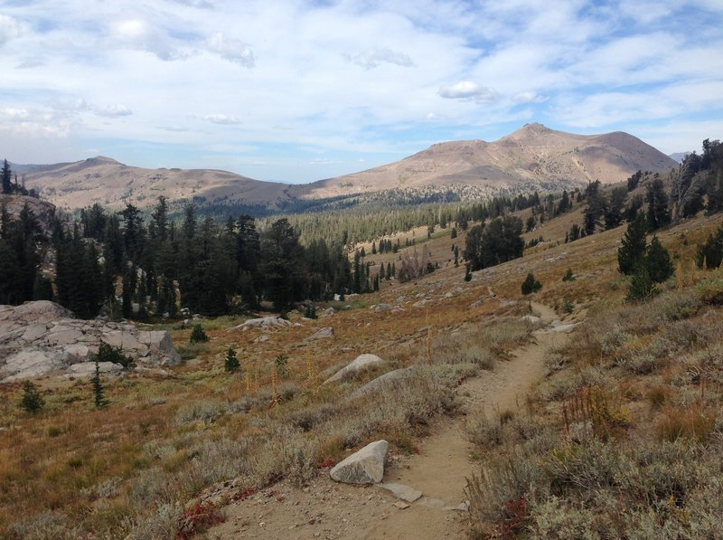 On the trail near Winnemucca Lake.