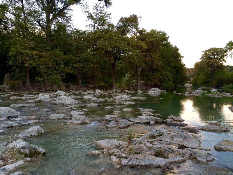 Along the banks at Guadalupe River State Park.