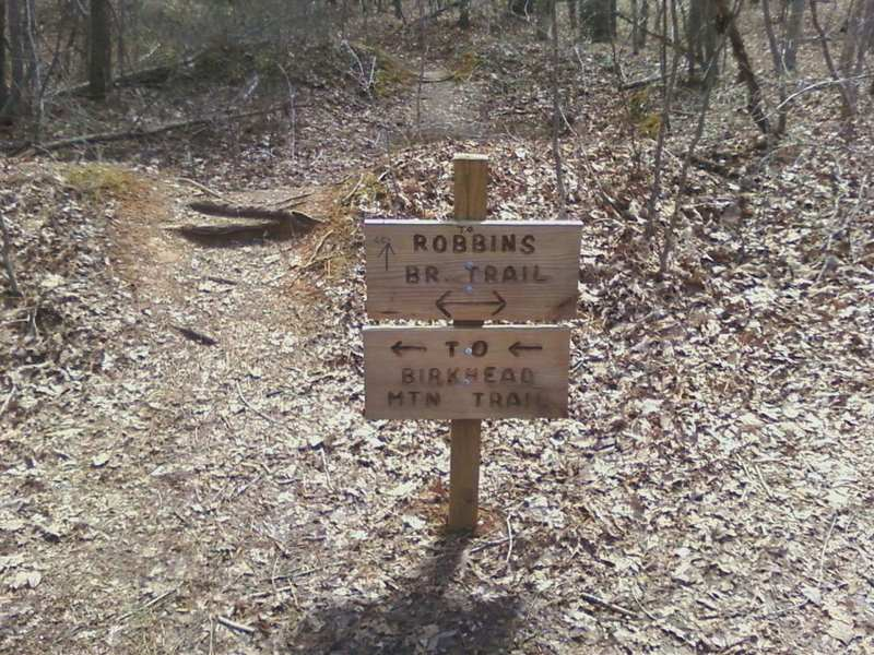 Trail markers appear after a field near some campsites. Keep heading straight to hit the Robbins Branch Trail.