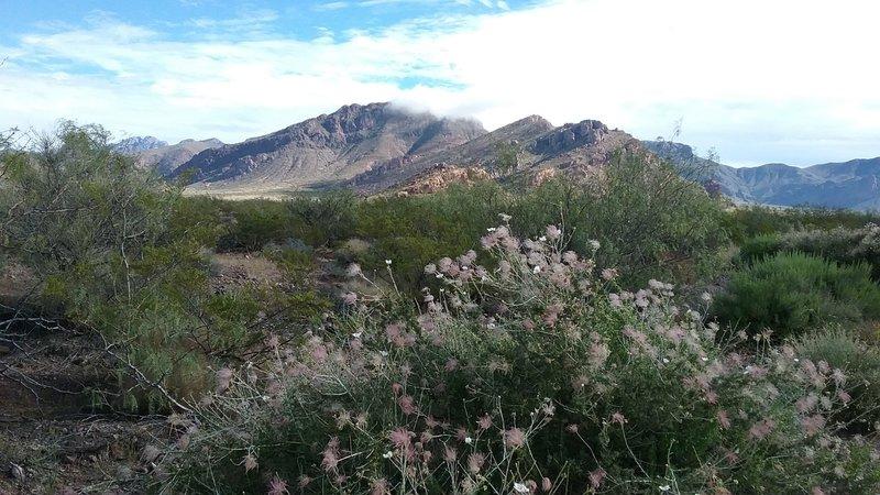 Stunning views of Pena Blanca are abundant from the Sierra Vista Trail.