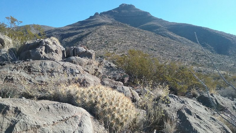 The Sierra Vista Trail is notorious for offering great views of Bishop Cap.