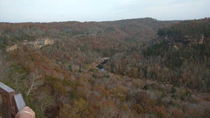 Blue Heron Overlook shows signs of the season in December.
