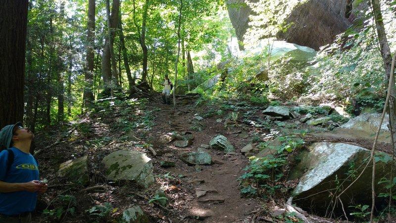 A hiker takes a break along the Honey Creek Loop Trail.