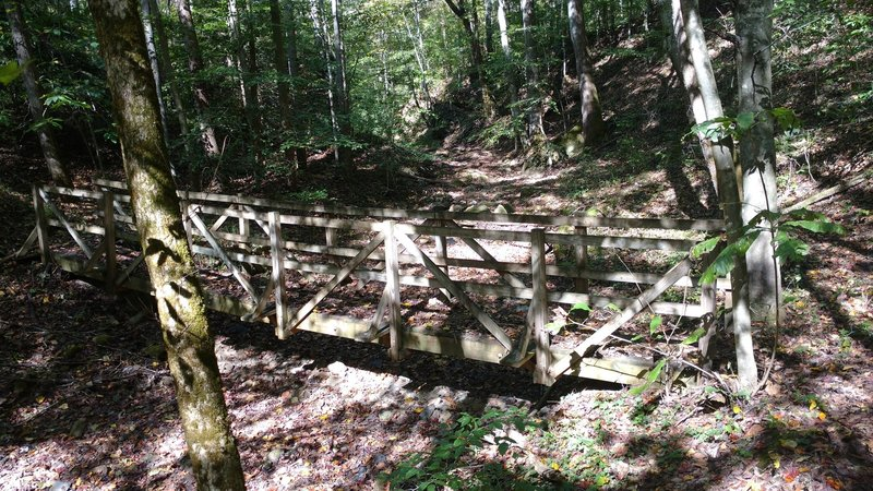 A bridge crosses over a dry creekbed near Rock Creek on the Kentucky Trail (north segment). After the bridge, there are stairs that lead up to Wilson Ridge and eventually connect back to the KY Trail near Blue Heron.