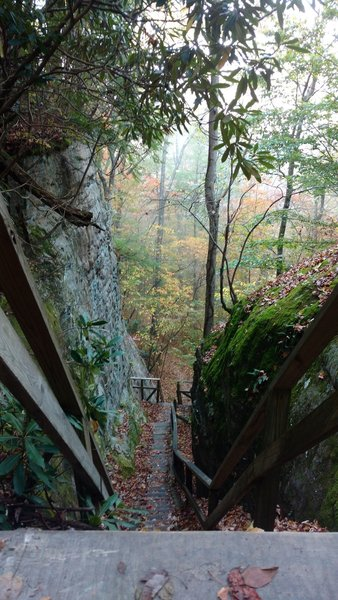 Steps along the Blue Heron Loop Trail lead to the rock climbing area at Crack-in-the-Rocks.
