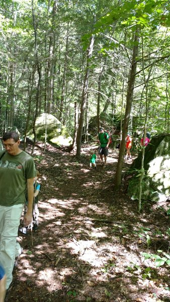 Families hike along the Blue Heron Loop Trail near the river.