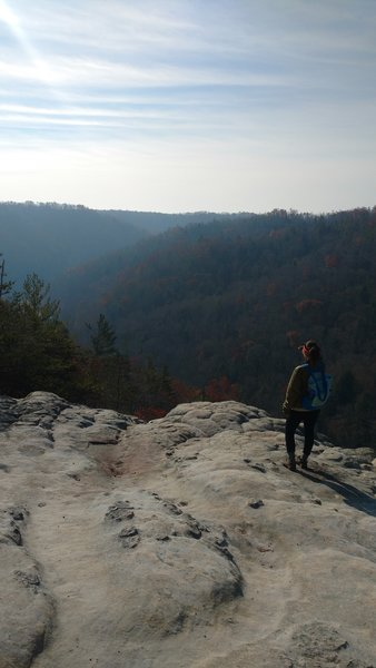 A hiker gazes out onto the gorge from the overlook along the Grand Gap Loop Trail.