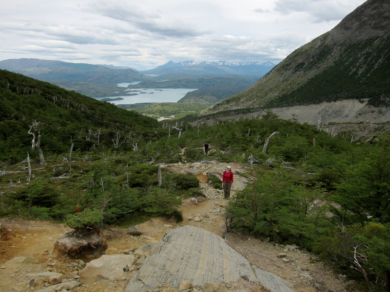 Hiking up to the Frances Lookout leads to gorgeous views of Lake Nordenskjold.
