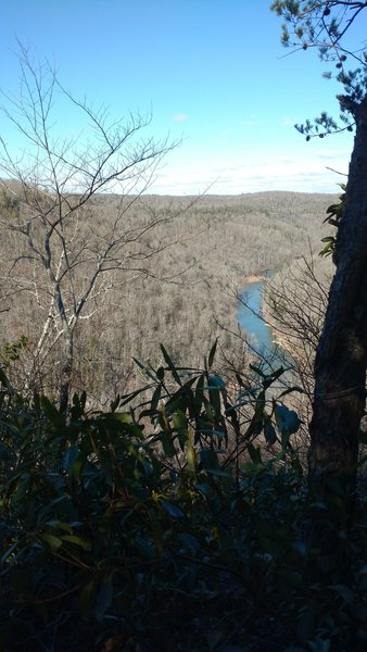 View of the Big South Fork river gorge from the Sunset overlook.