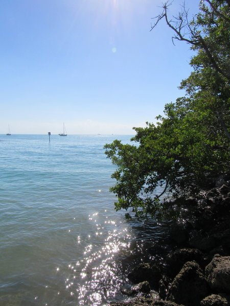 Great views of Stiltsville and Biscayne Bays await travellers of the Robin's Birding Trail.