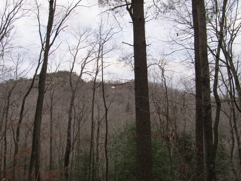 During the winter, Double Arch can be seen through the trees on the Courthouse Rock Trail.