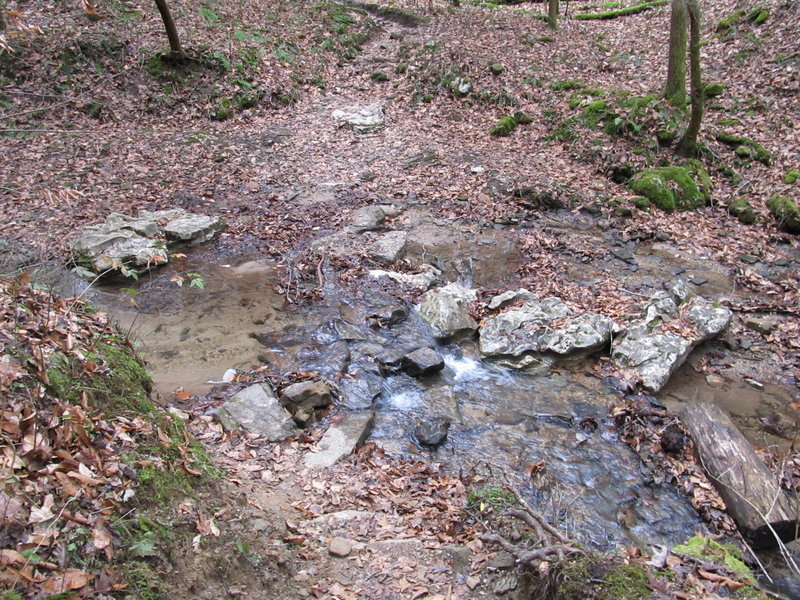 Crossing the Auxier Branch Creek is both scenic and easy.