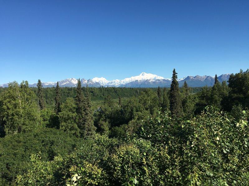 Numerous peaks dot the skyline in Denali National Park & Preserve.