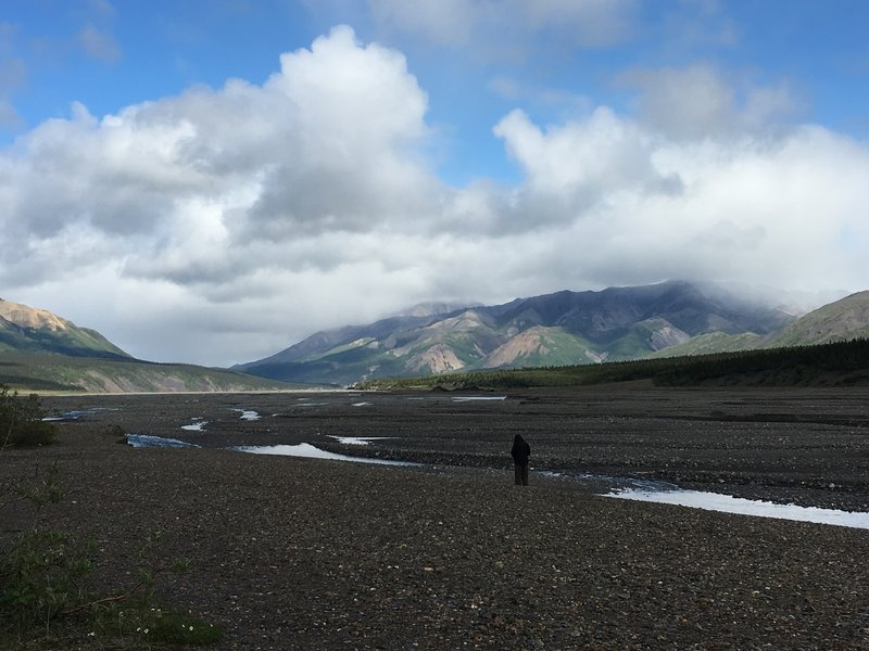 Unbelievable mountain views await visitors to the Toklat River Contact Station in Denali National Park.