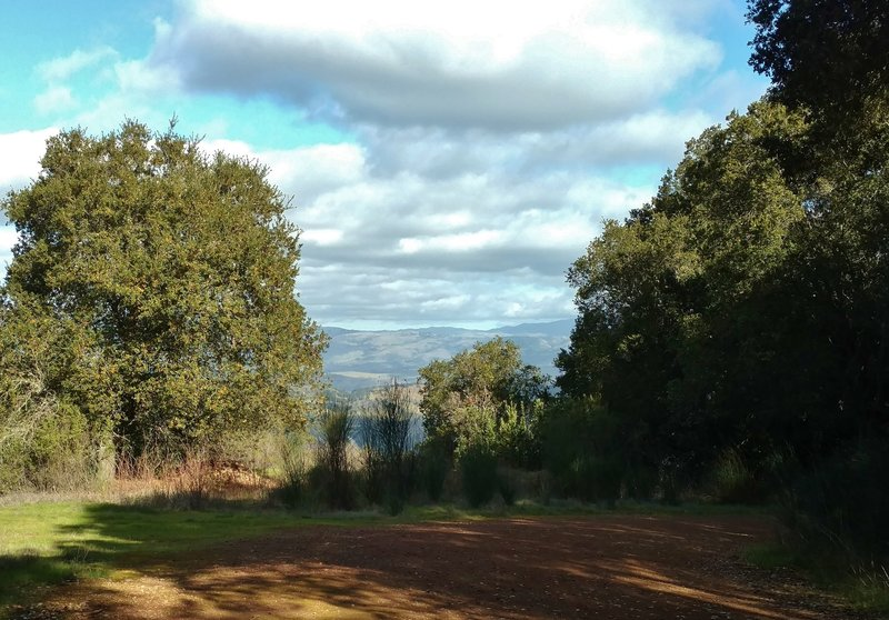 The Mine Hill Trail offers occasional glimpses of the San Francisco East Bay.